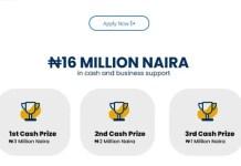 N16 Million Grant for Nigerian Graduates Kicks Off – Apply Here
