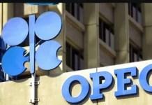 OPEC Recruitment 2021 – Apply opec.org Here
