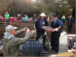 PRESENTATION: Fish Counting on the Colquitz with Dorothy Chambers. @ CNIB/ Silver Threads | Victoria | British Columbia | Canada