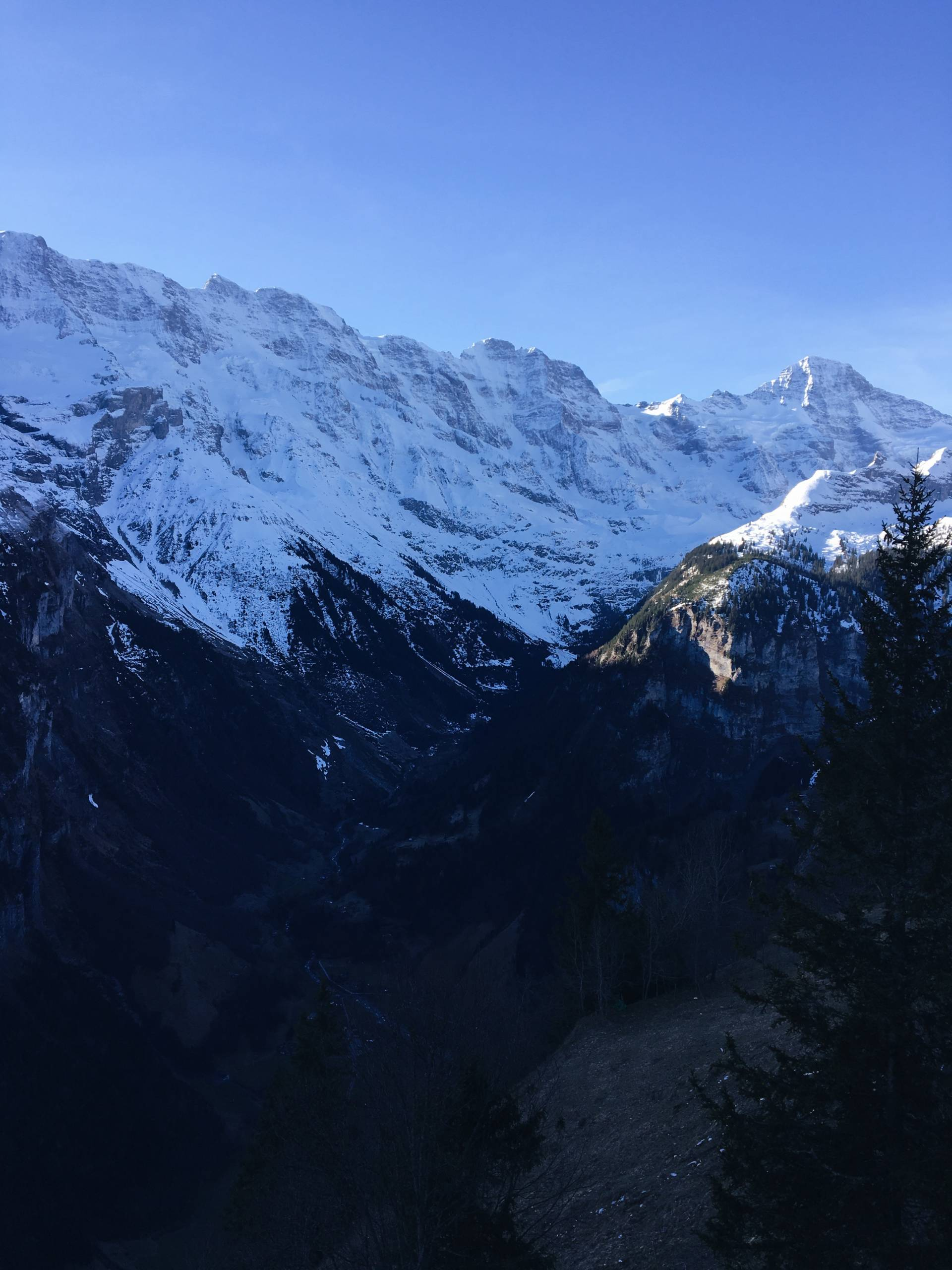 Waking up in the Swiss Alps
