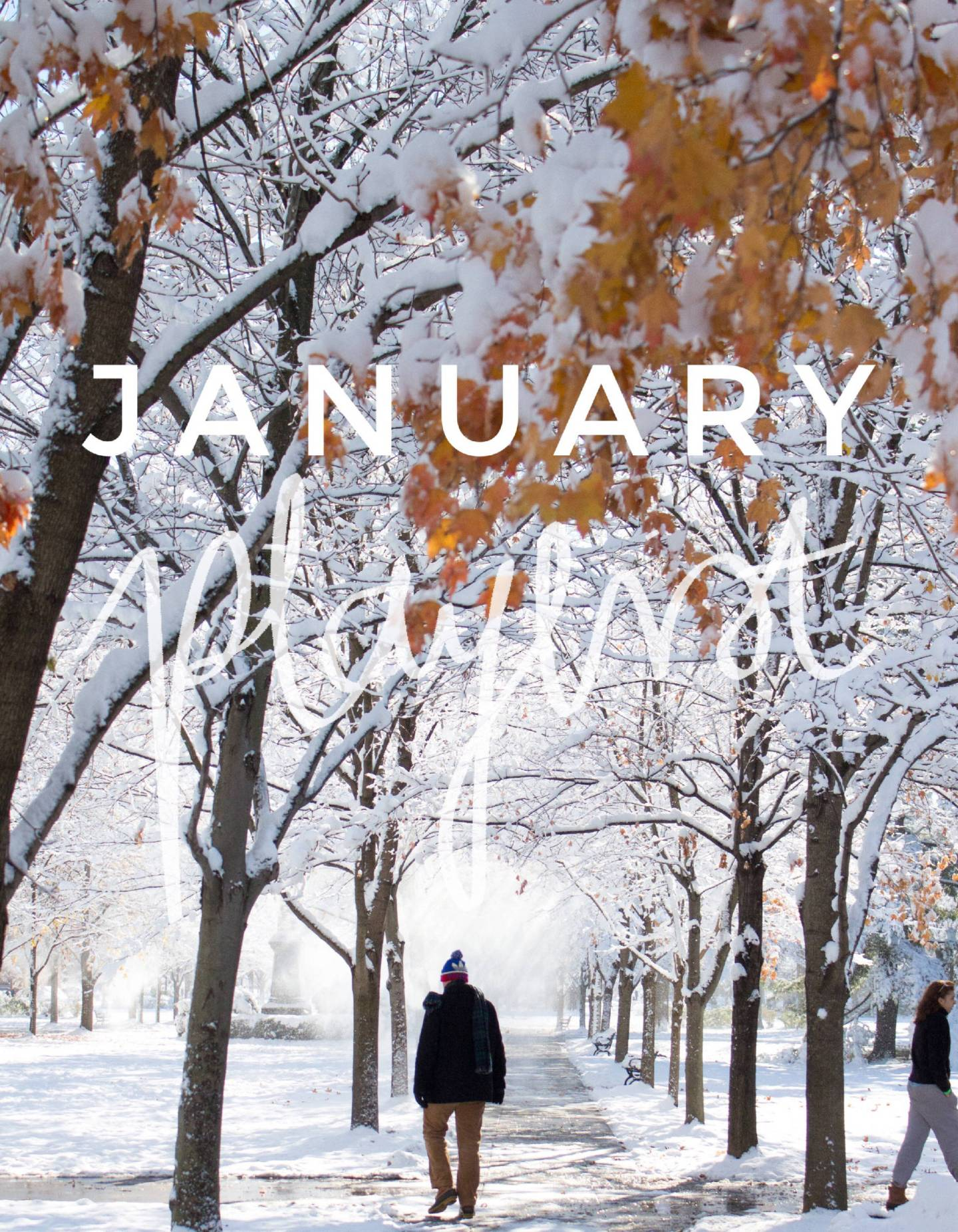 January Playlist – 10 Songs to Listen to This Month.