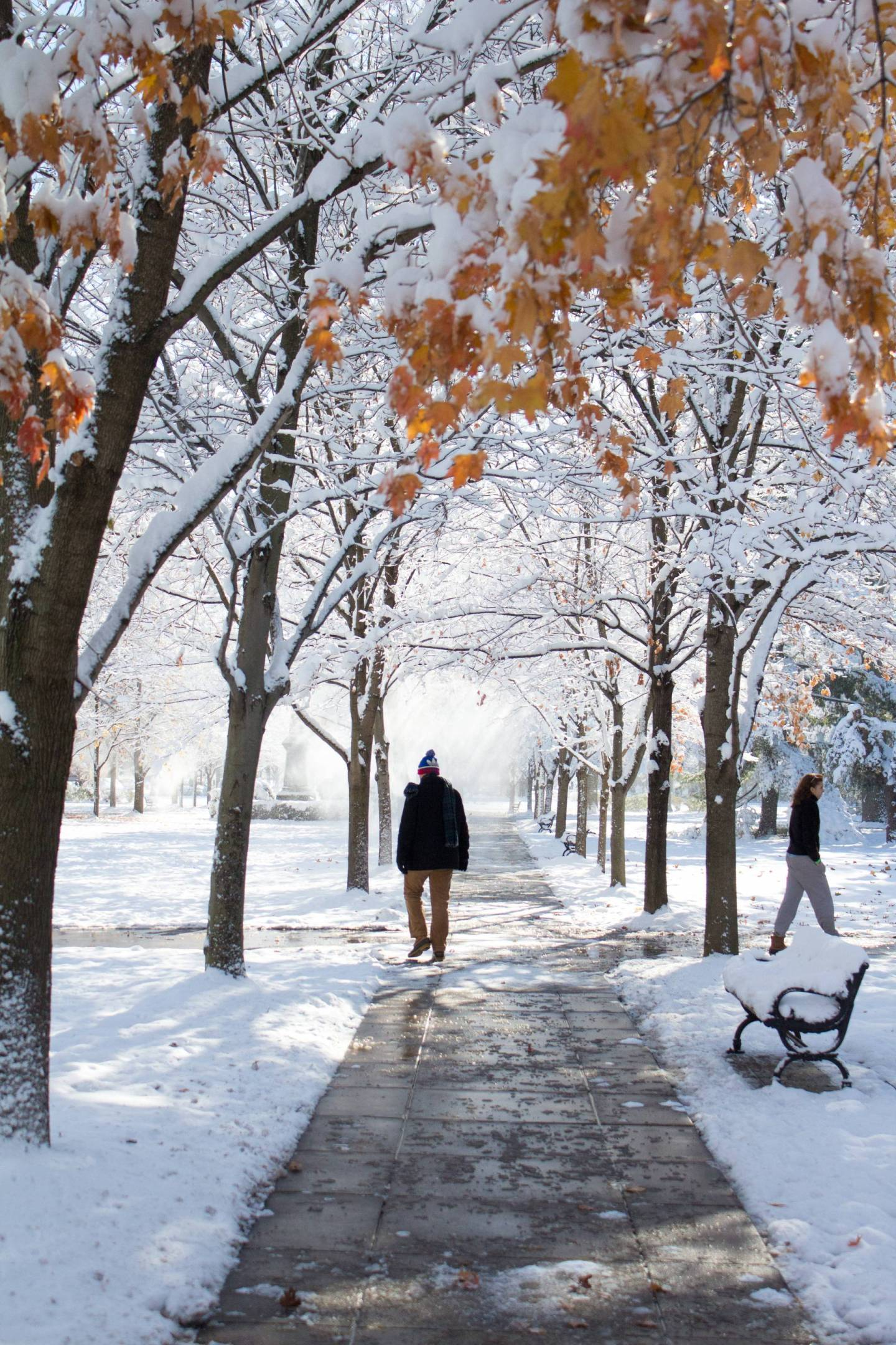Visiting South Bend, Indiana in the Winter? Bundle up because the Notre Dame campus is gorgeous after a snowfall! Plus, tons of other hidden gem restaurants and things to do - click through!