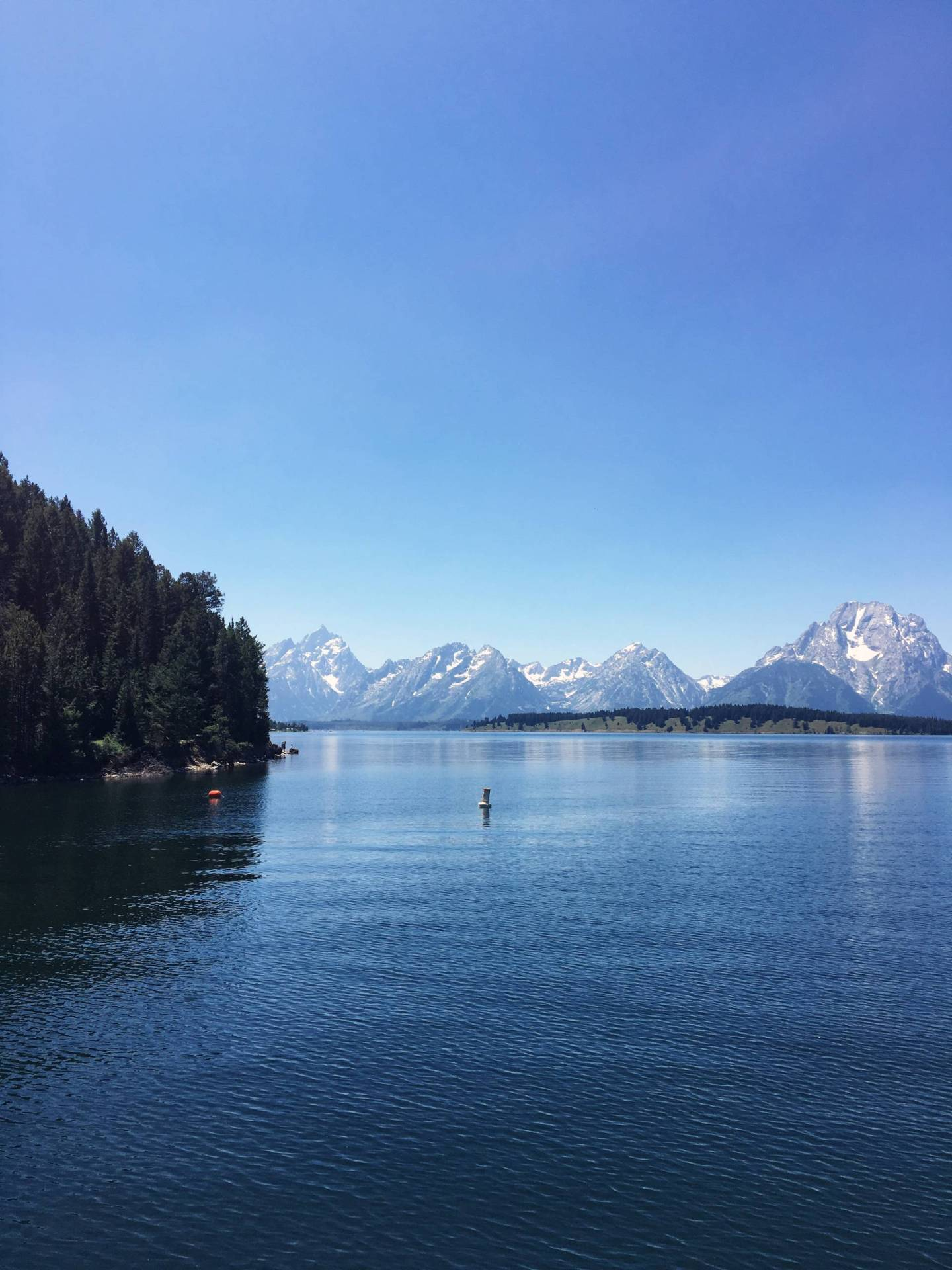 Jackson Lake in the Summer