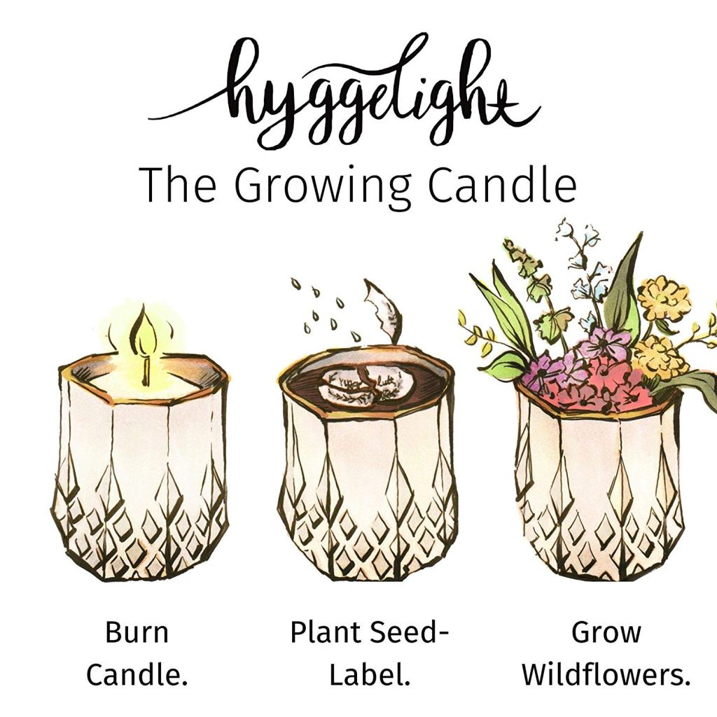 Hyggelight Growing Candle - Eco-Friendly Gifts | Low Waste Gift Ideas | Goldilocks Effect
