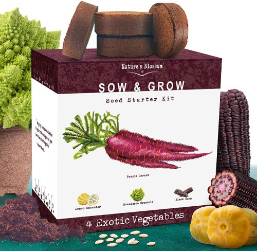 Exotic Vegetables Growing Kit - Eco-Friendly Gifts | Low Waste Gift Ideas | Goldilocks Effect