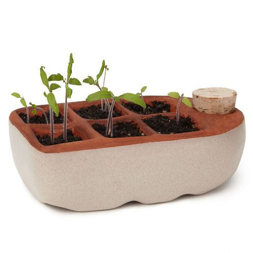 Self-Watering Seedling Starter - Eco-Friendly Gifts | Low Waste Gift Ideas | Goldilocks Effect