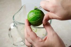 Lime Zest for Horchata