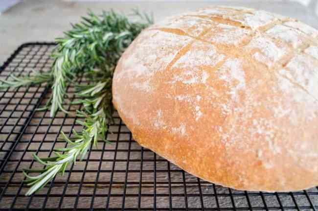 Rustic Rosemary Olive Bread - The Goldilocks Kitchen