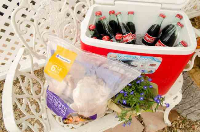 Ingredients for Southwestern Grilled Chicken Salad with bottled Coca-Cola - The Goldilocks Kitchen