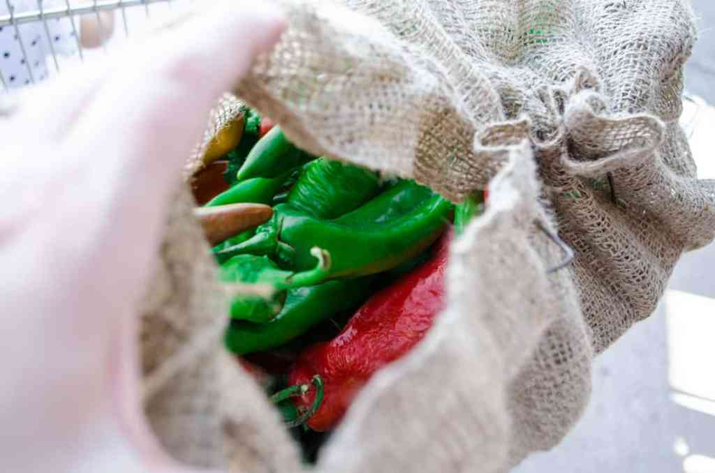 My burlap sack full of green chile for New Mexico Green Chile Roasting 101