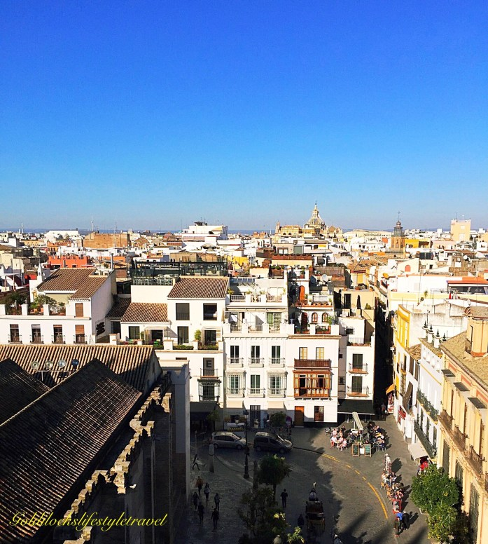 View of Seville from Giralda Tower