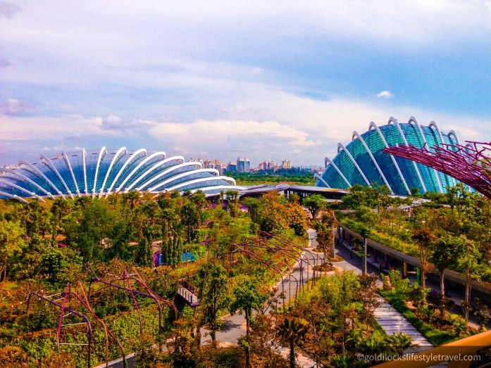 The view from the skywalk at Supertree Grove