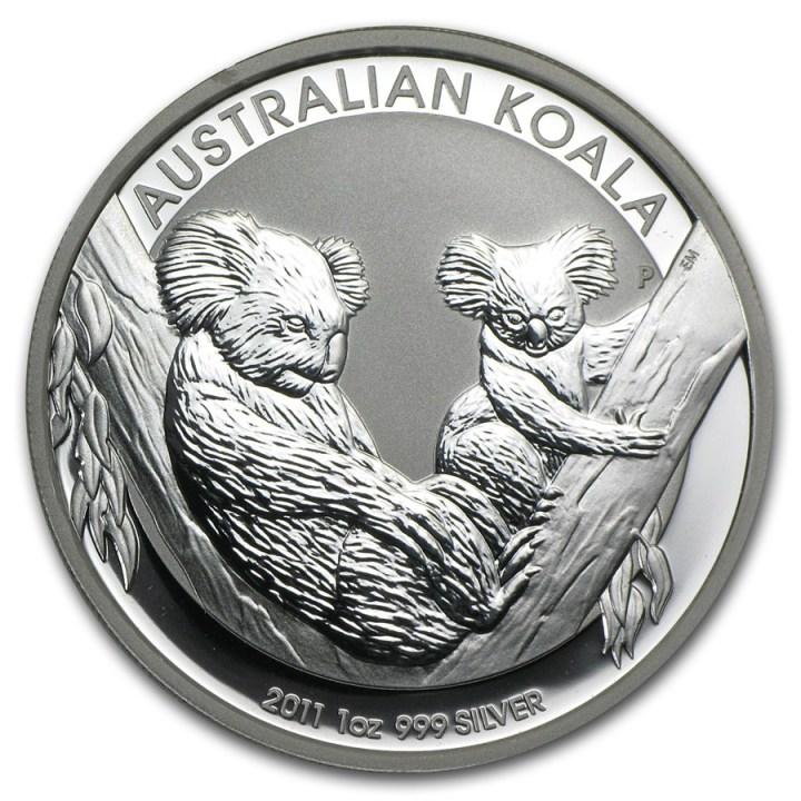australian-koala