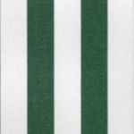 Green & White Stripe