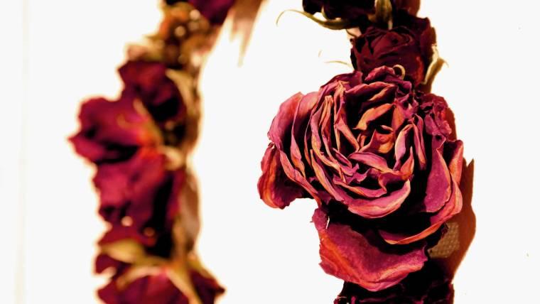 Kette-aus-Rosen