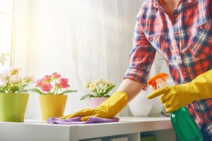 SPRING-CLEANING-KILLING-GERMS