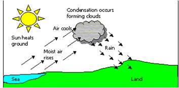 Convectional rainfall diagram | tillsgeogblog