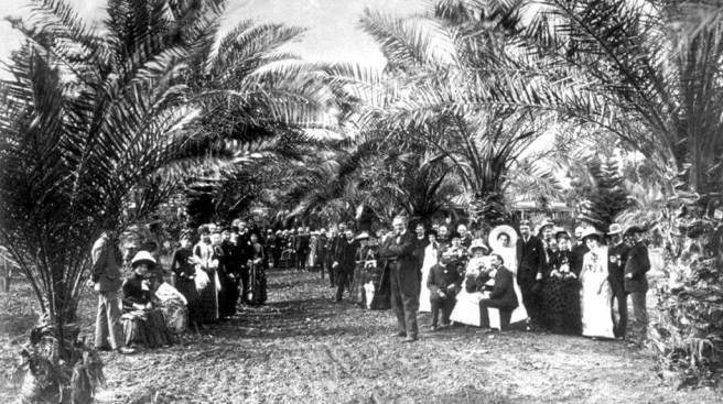lawn-party-under-the-date-palms