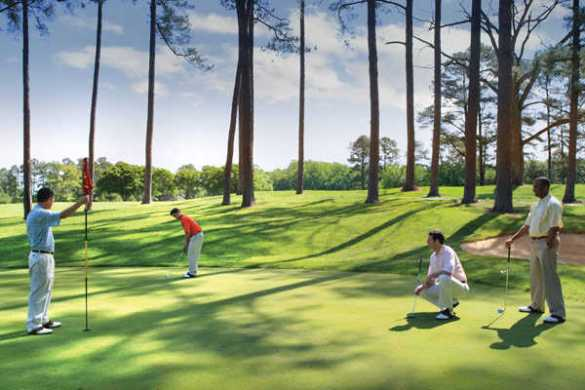 Green Course at Golden Horseshoe Golf Club in Williamsburg  Virginia     Green Course at Golden Horseshoe Golf Club in Williamsburg  Virginia  USA    Golf Advisor