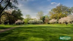 green oaks blossoms 15th hole-5090363