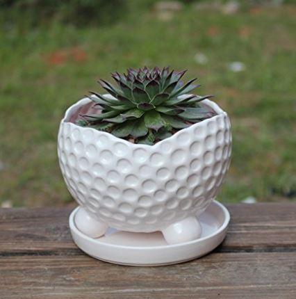 Golf Ball Flower Planter