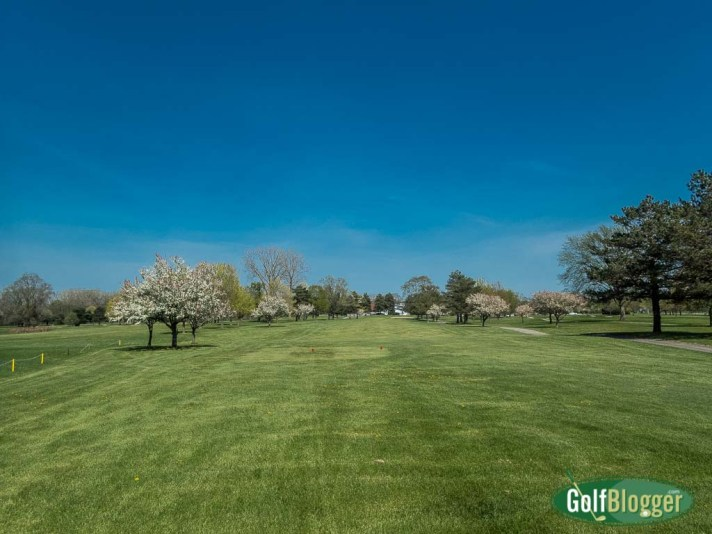 In The Spring - Golf Poetry