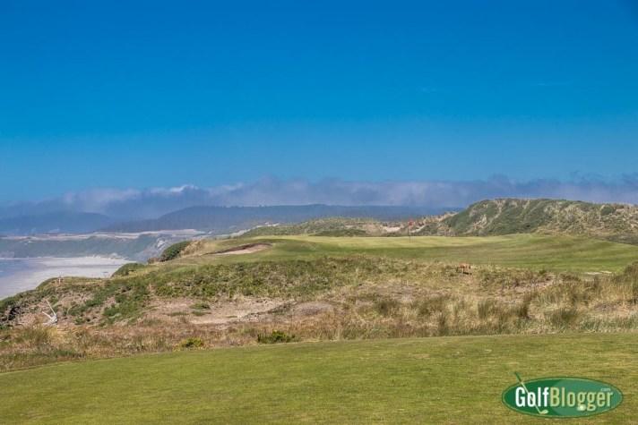 Bandon Dunes Golf Course Review
