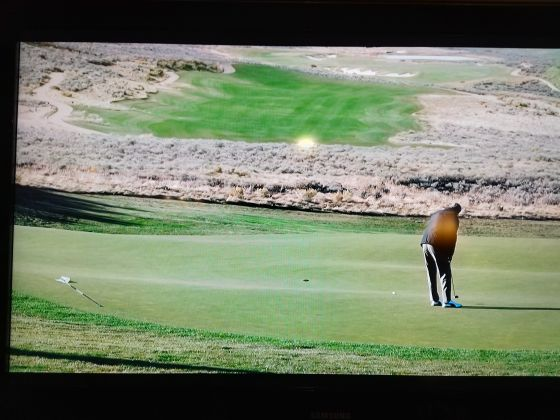 Golf Is Everywhere: Yellowstone Edition