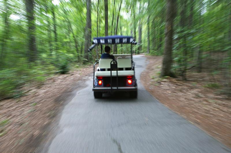Golf Cart Paths Peachtree City