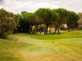 golfo11