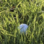 learn some great tips about golf here - Be The Best Golfer You Can Be With These Tips!