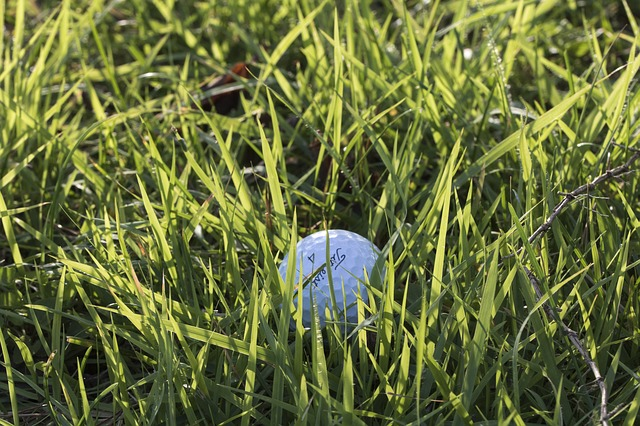 learn some great tips about golf here - Learn Some Great Tips About Golf Here
