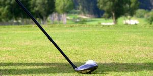 Best Graphite Shafts for Drivers