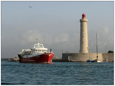 port de sète pêche produits surgelés