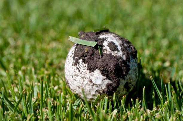 dirty golf balls