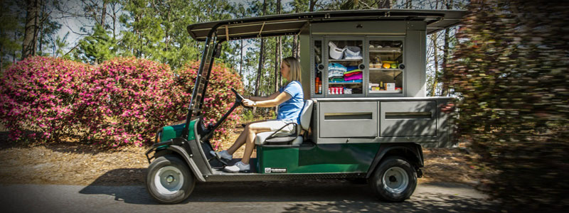Refresher FS4 EZ GO Golf Cart