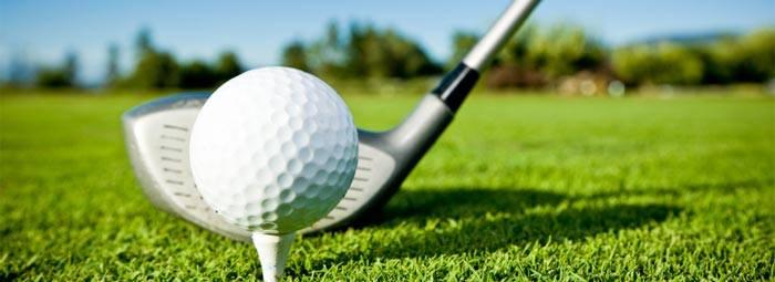 DMHA Golf Tournament
