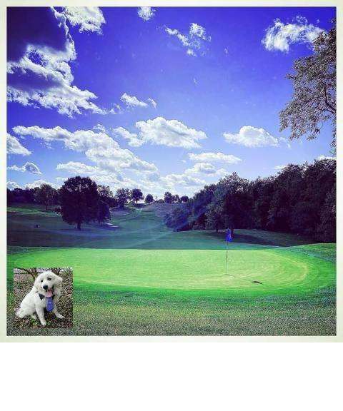 Great Pyrenees Golf Tournament