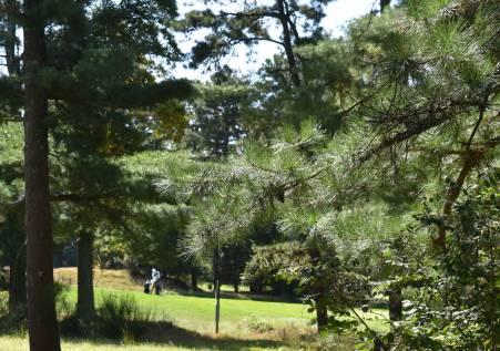 A golfer plays at Pine Valley Golf Club