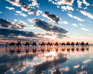 camels-sunset-cable-beach-broome-western-australia