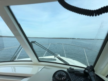 harbor-in-view