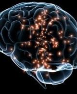 Признаки ирритации медиобазальных структур головного мозга