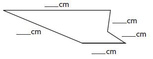 Go Math Grade 3 Answer Key Chapter 11 Perimeter and Area Find Perimeter img 10