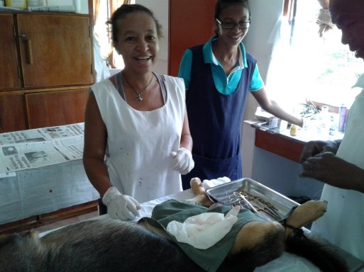 animal_clinic_donated