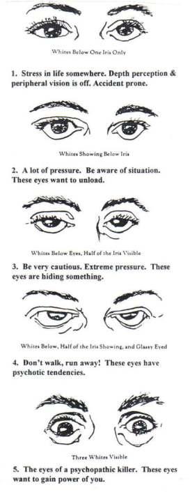 Sanpaku Eyes