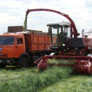 Gomselmash FS60-8