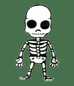 esqueleto_v2