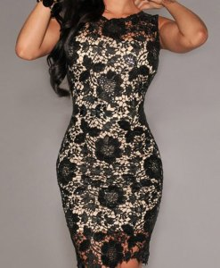 Elegant Women's Jewel Neck Sleeveless Bodycon Lace Dress