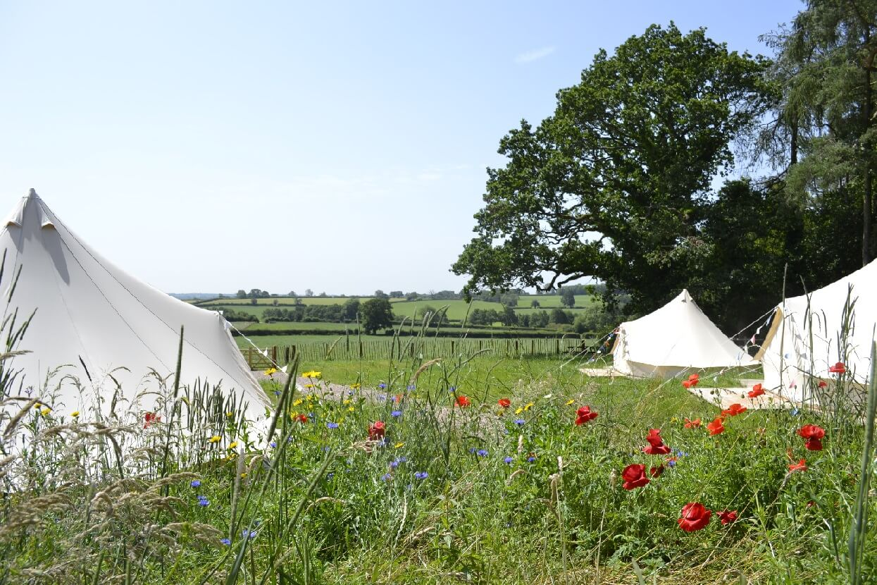 Tinkers Bells Glamping