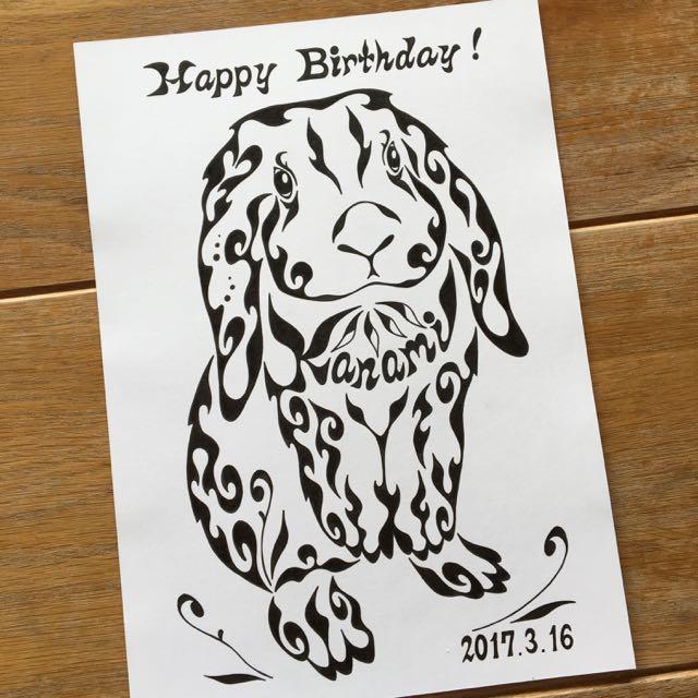 ロップイヤー うさぎ ウサギ 誕生日